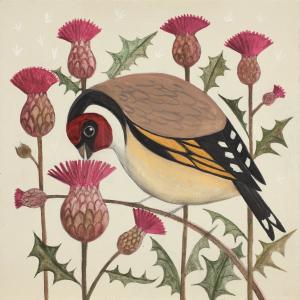 Gorging Goldfinch